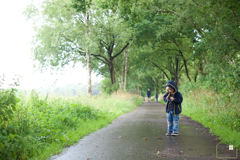 Wandelen – Route Beekdal Hondstong