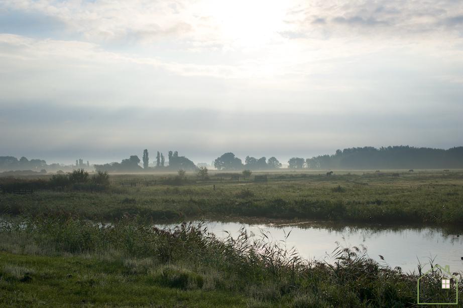 Noorddijk