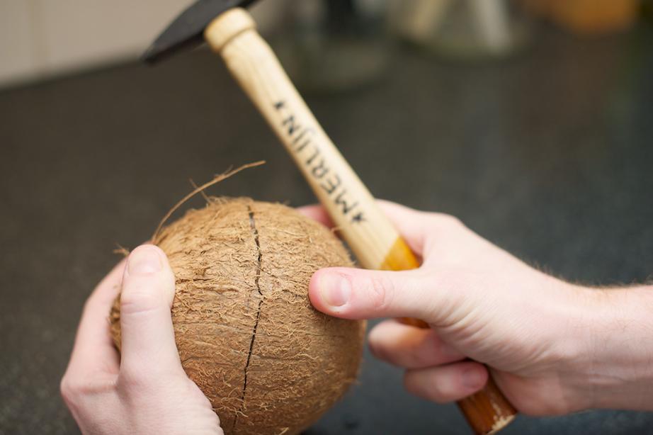 kokosnoot 3