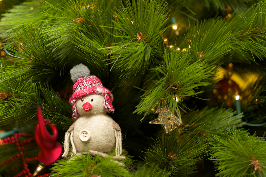 tweede kerstdag 2013 10