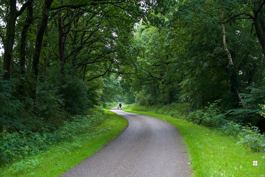 Wandelen Drenthe