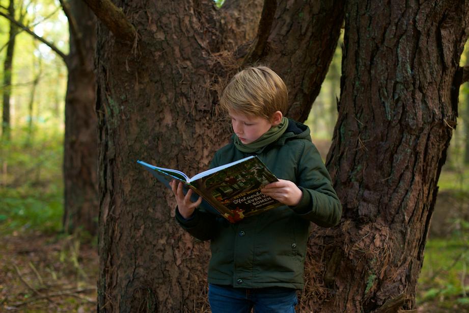 Het verborgen leven van bomen